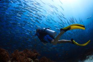 沖縄ダイビングは恩納村の青の洞窟が人気